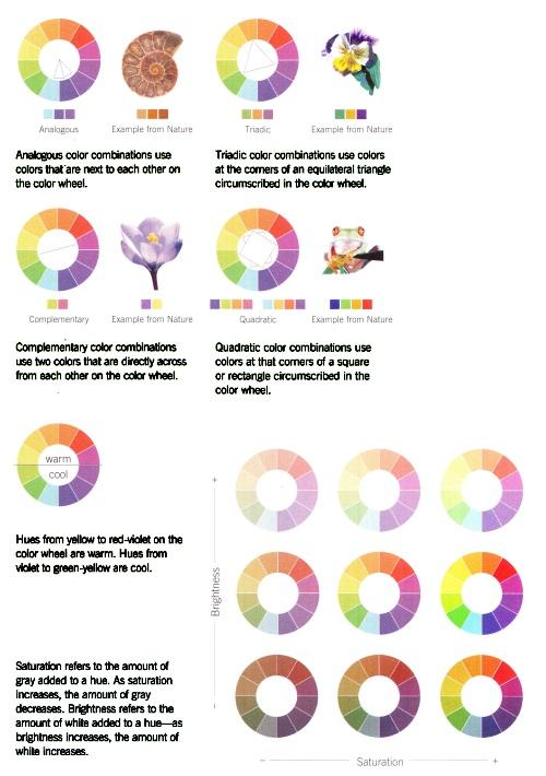 Schémas d'utilisation des couleurs